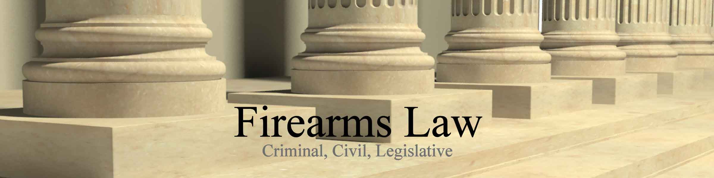 firearms-law-practice2